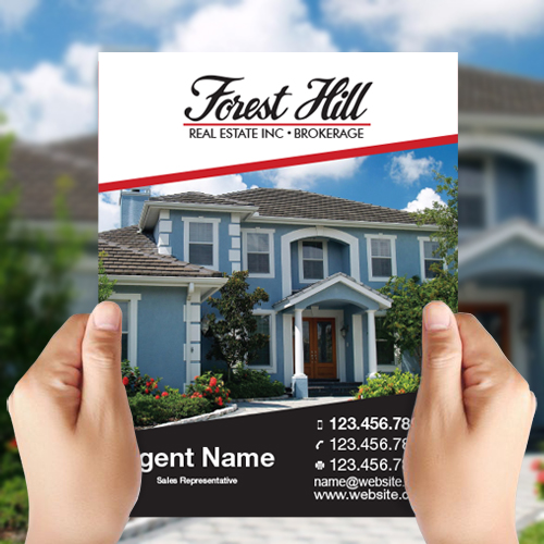 Feature Sheets<br><br> - Forest Hill